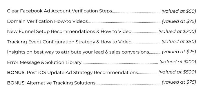 List of values for Elevate Her Marketing's Thriving After the iOS Privacy Update Mini Course